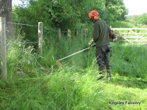 Strimming & gardening