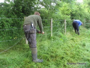 Fencing duties