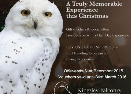 Kingsley Christmas Specials